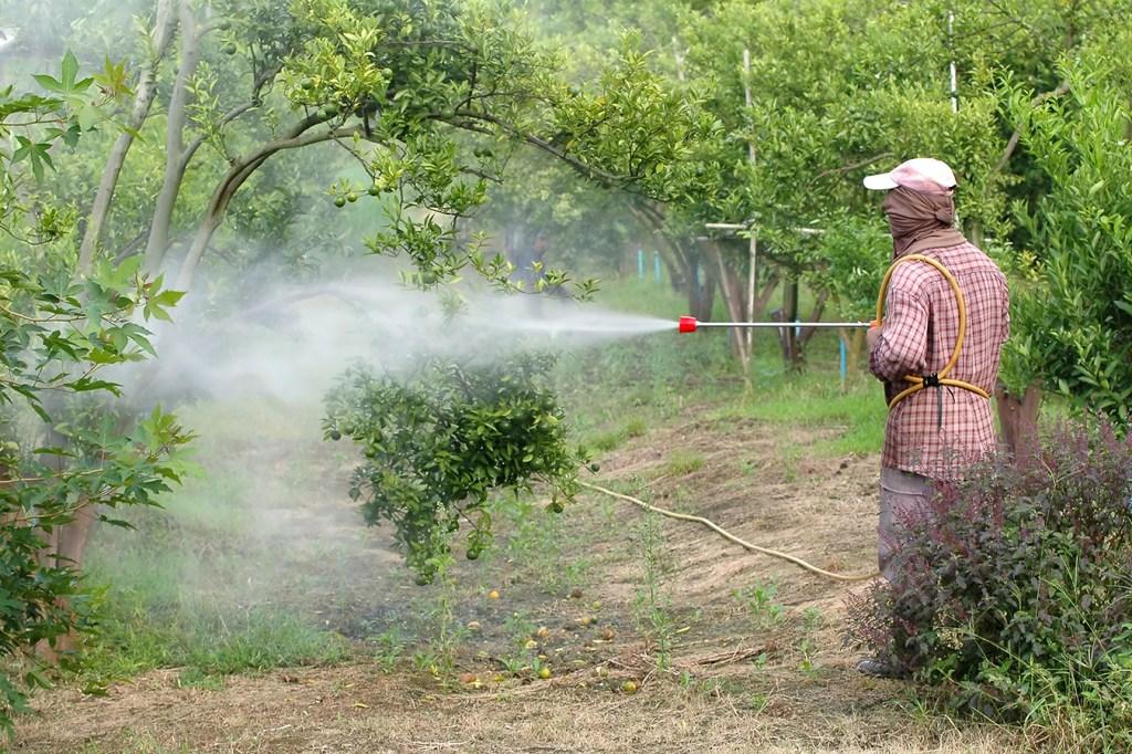 State Bans Pesticide Linked To Developmental Problems