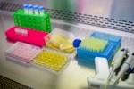 Vacuna contra el coronavirus: ¿en qué punto está la investigación? thumbnail