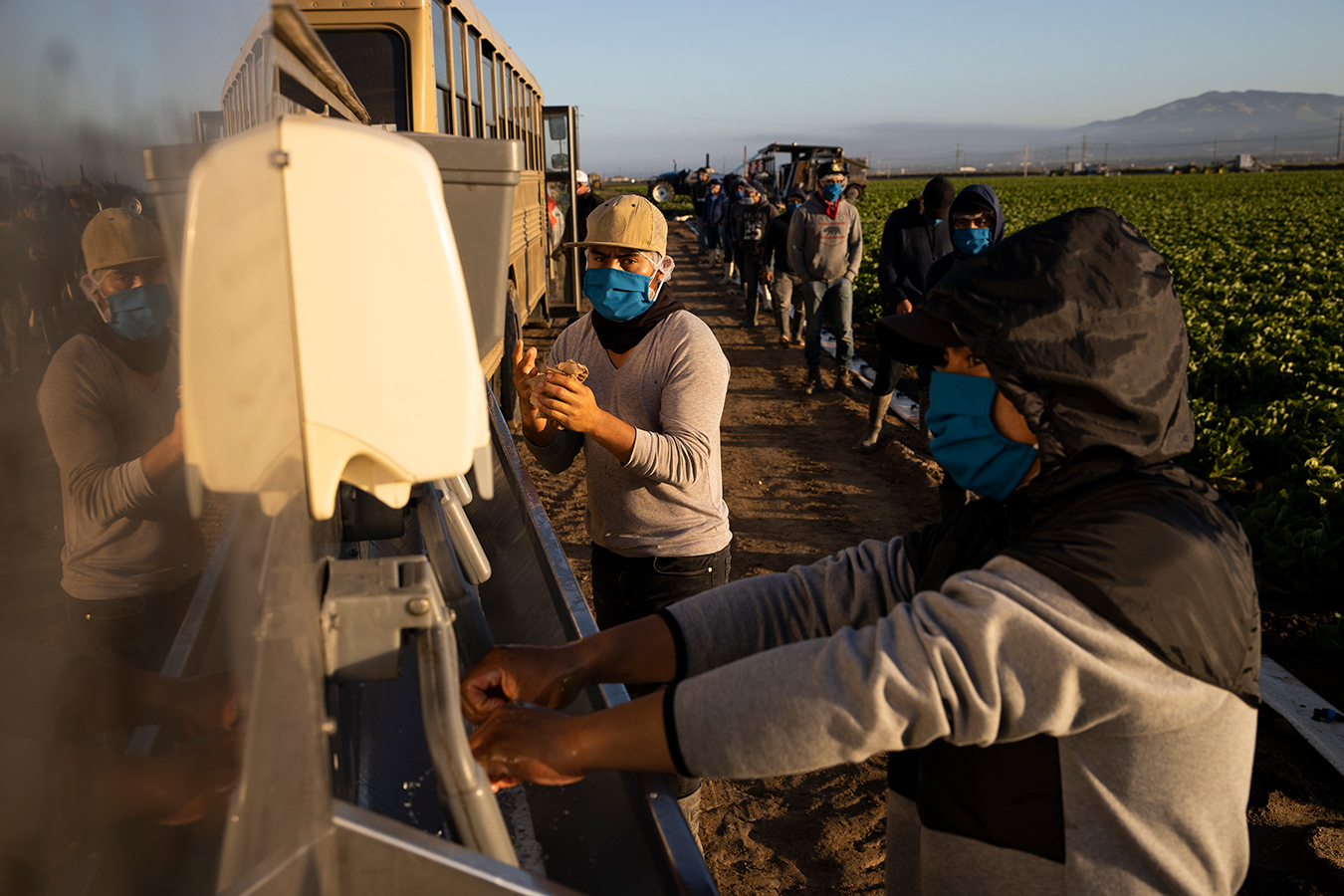 Trabajadores agrícolas en alto riesgo de contraer coronavirus y sin protección federal
