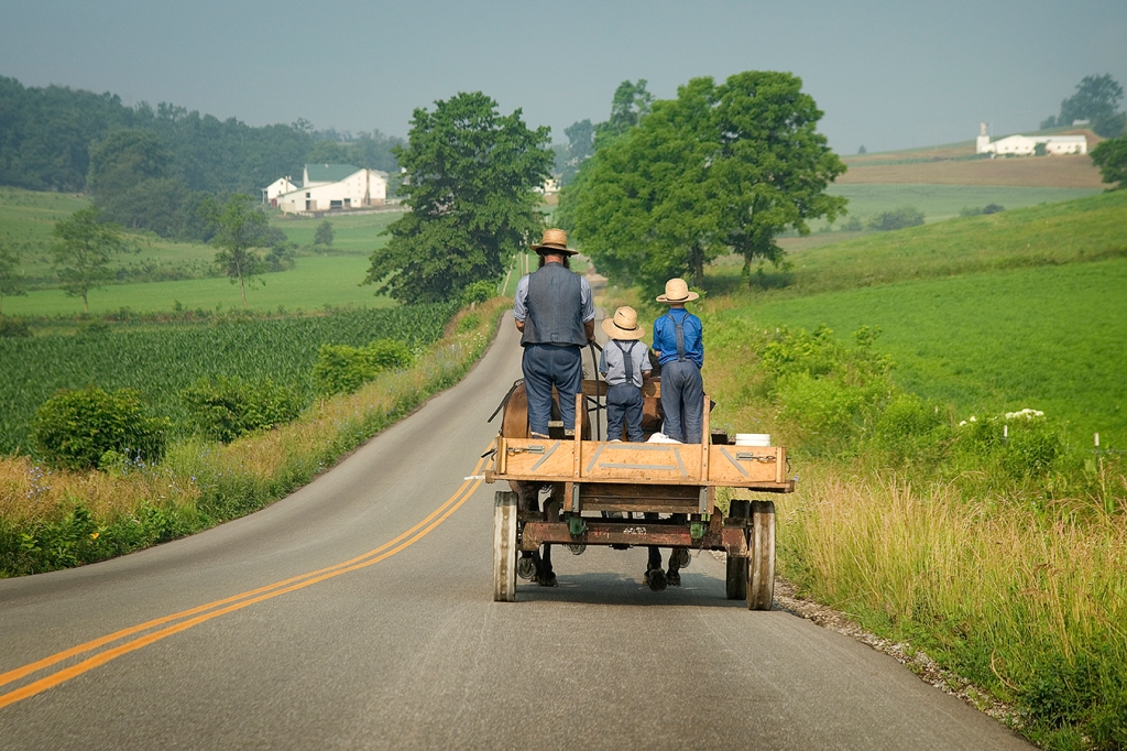 Ohio's Amish Suffered a Lot From Covid, but Vaccines Are Still a Hard Sell thumbnail