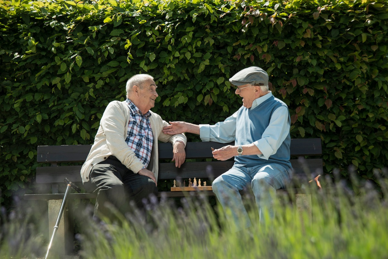 Two old friends sitting on park bench playing chess